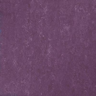 Linoleum vloeren Amsterdam West_Veneto Begonia